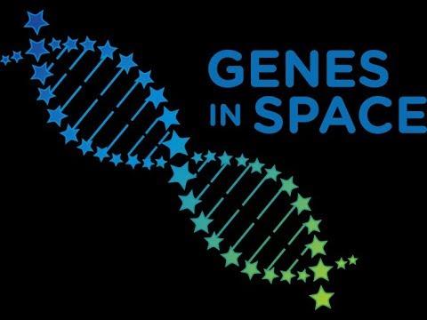 genes%2bin%2bspace%2blogo.jpg